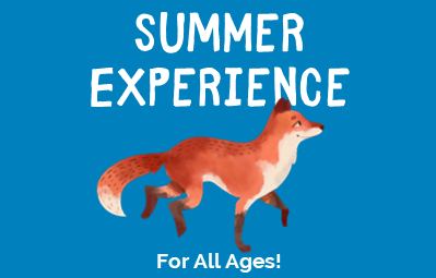 Summer Experience 2020